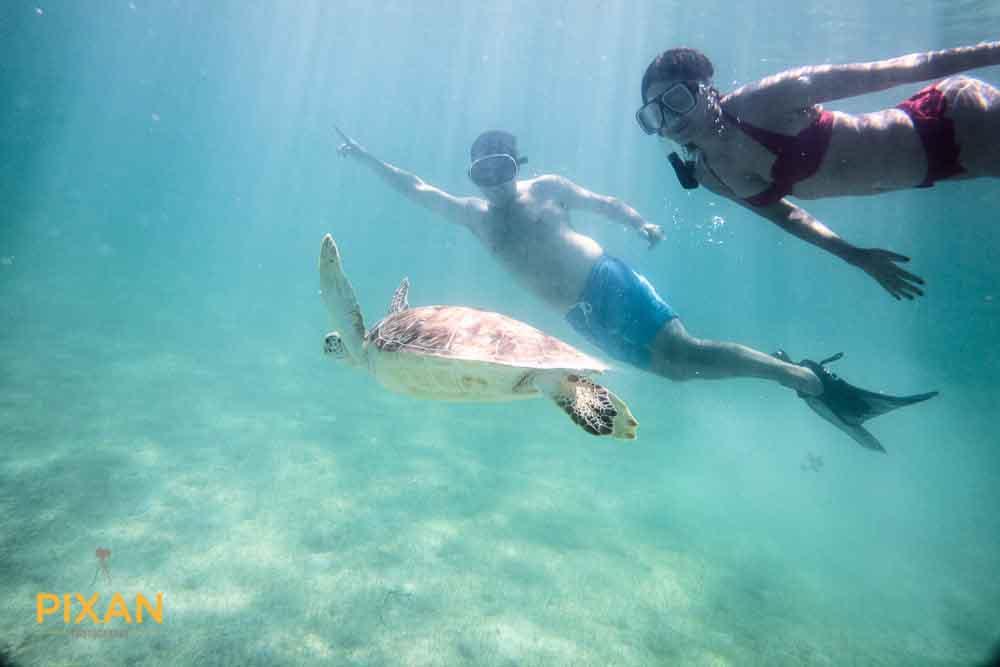 Riviera Maya wedding underwater sealife photos