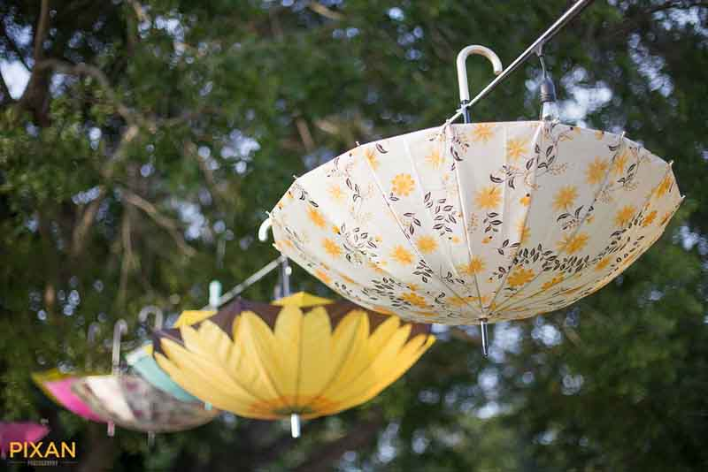 Vintage parasols or umbrellas for summer wedding